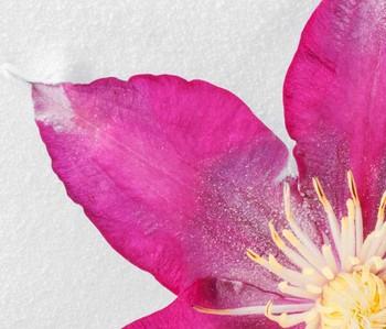 freeze_2012_1105_-9.jpg