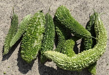 収穫20121020_-3.jpg