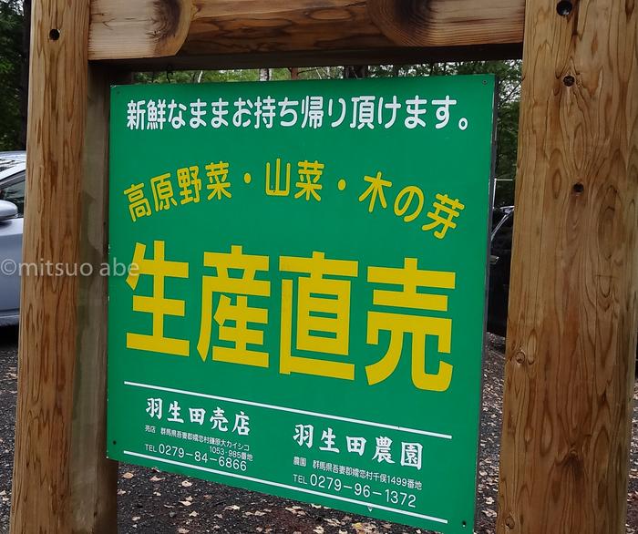 IMG_3438karuizawa_2.jpg