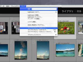 LR4_ni_-11.jpg