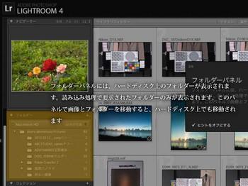 LR4_ni_-17.jpg