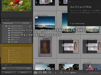 LR4_ni_-21.jpg