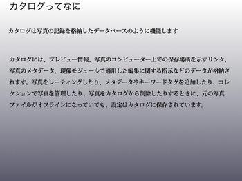 LR4_ni_-8.jpg