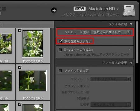 LR4_yomi_0013-Edit-Edit.jpg