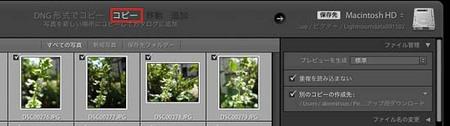 LR4_yomi_0018-Edit.jpg