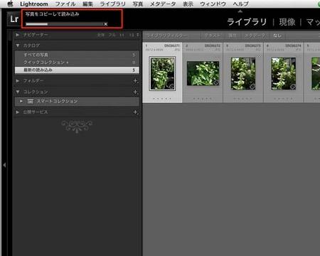 LR4_yomi_0019-Edit.jpg