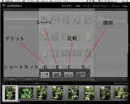 LR4_yomi_0022_4グリットbu_.jpg