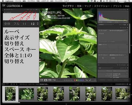 LR4_yomi_0024_1表示サイズbu_.jpg