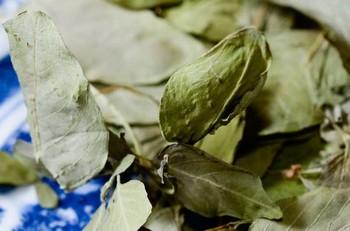 bajiru_2012_1107_-2.jpg