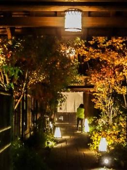 tokujiyu_20121125-2.jpg