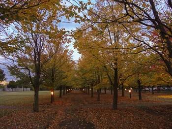 zoukei20121029_-10.jpg