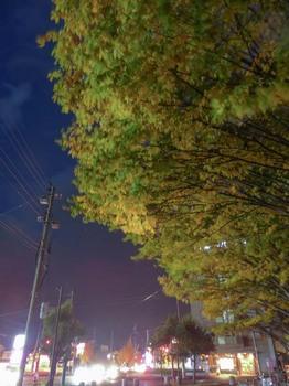 zoukei_2012_1110_-54.jpg